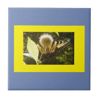 Gelber Monarch-blaue gerahmte Keramik-Fliese Keramikfliese