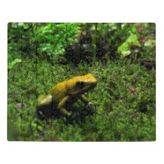 Gelber Pfeil-Frosch Puzzle