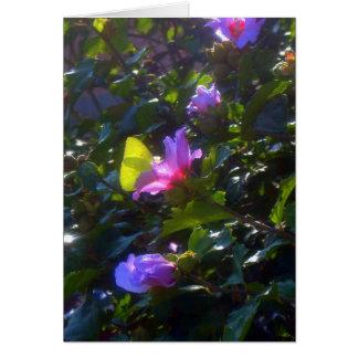 Gelber Schmetterling auf rosa Rose von Sharon Karte
