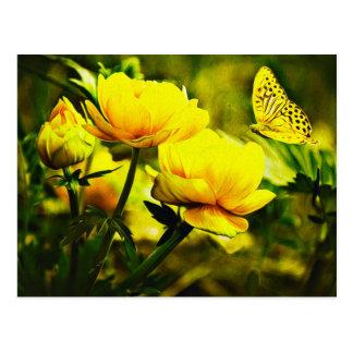 Gelber Schmetterling und die Rose Postkarte