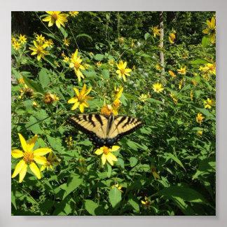 Gelber Schwalben-Schwanz-Schmetterling Poster