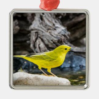 Gelber Trällerer-Vogel-Geschenke und Zusätze Silbernes Ornament