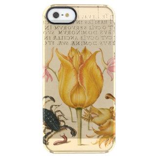 gelber Tulpeskorpion Durchsichtige iPhone SE/5/5s Hülle