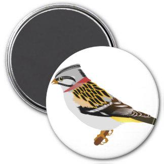 Gelber und brauner Spatz des bunten Cartoon Runder Magnet 7,6 Cm