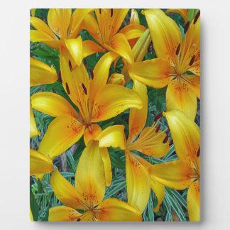 gelber und orange Lilie Fotoplatte