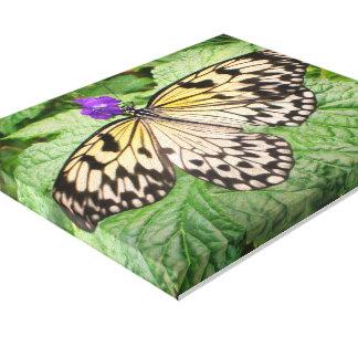 Gelber und schwarzer Schmetterlings-Kunst-Druck Leinwanddruck