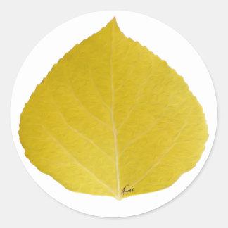 Gelbes Aspen-Blatt #5 Runder Aufkleber