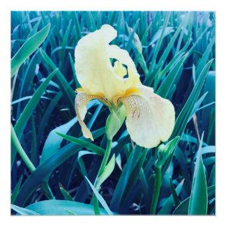 Gelbes Blumen-Plakat Poster