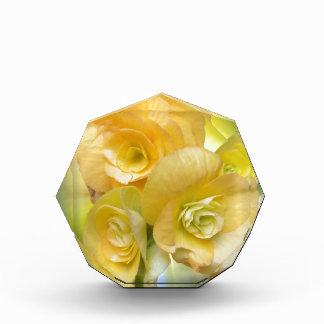 gelbes Blumenglänzen Acryl Auszeichnung