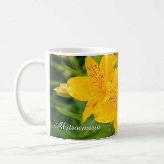 Gelbes Foto der peruanischen Lilien Tasse