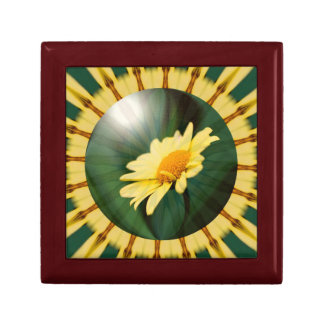 Gelbes Gänseblümchen-abstrakte mit Blumenkunst Erinnerungskiste