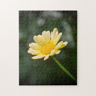 Gelbes Gänseblümchen-Fotopuzzlespiel Puzzle