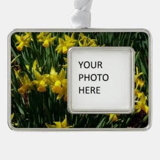 Gelbes heitre Frühlings-Blumen der Narzissen-I Rahmen-Ornament Silber