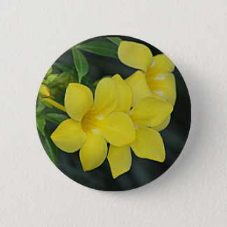 Gelbes Jessamine South Carolina Runder Button 5,7 Cm