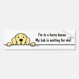 Gelbes Labrador, das Sie Autoaufkleber aufpasst