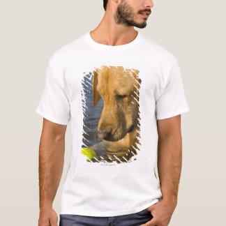 Gelbes Labrador mit einem Tennisball im Wasser T-Shirt