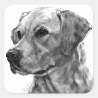 Gelbes Labrador Quadratischer Aufkleber