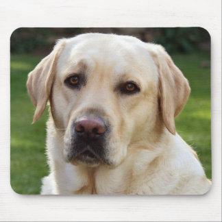 Gelbes Labrador retriever-Hündchen - Grün Mousepad