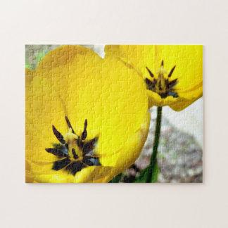 Gelbes Tulpe-Foto-Puzzlespiel Puzzle