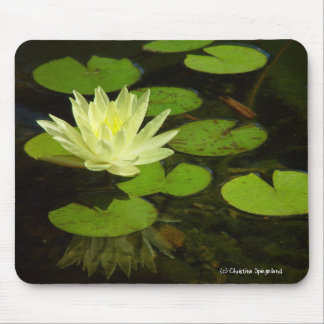 Gelbes Wasser-Lilien-Blume Mousepad