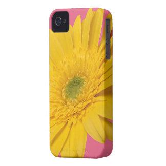 Gelbes Zinnia-Blumenmuster auf Geißblattrosa iPhone 4 Case-Mate Hüllen