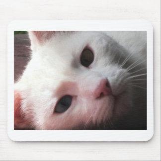 Gelegentliche Katzen Mauspads