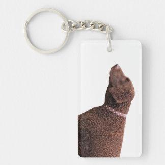 Gelockt-überzogener Retrieverhundeschönes Foto, Beidseitiger Rechteckiger Acryl Schlüsselanhänger