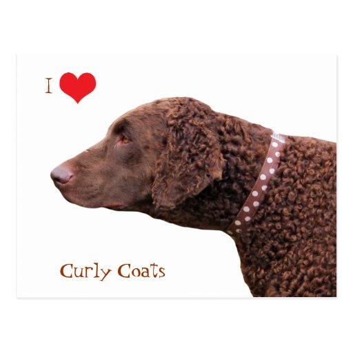 Gelockte überzogene Liebe-Herzpostkarte des Retrie Postkarte
