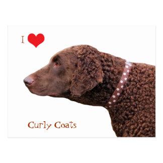 Gelockte überzogene Liebe-Herzpostkarte des Retrie Postkarten
