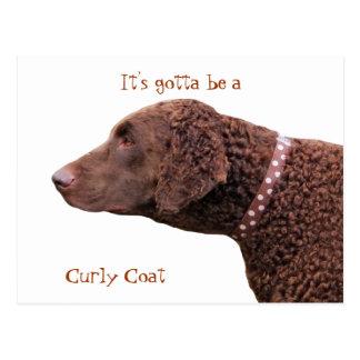 Gelockte überzogene Retrieverhundepostkarte Postkarte