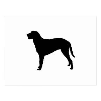 Gelockte überzogene RetrieverjagdhundSilhouette Postkarten