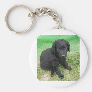 gelockter überzogener Retriever puppy.png Standard Runder Schlüsselanhänger