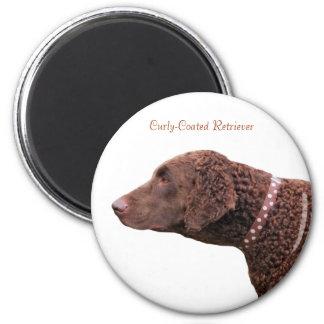 Gelockter überzogener Retrieverhundemagnet, Runder Magnet 5,7 Cm