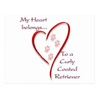 Gelocktes überzogenes Retriever-Herz gehört Postkarte