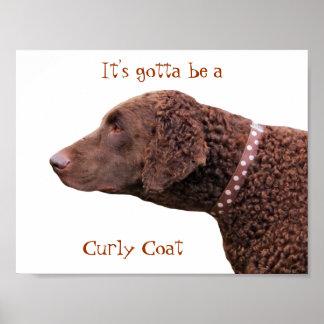 Gelocktes überzogenes Retrieverhundeplakat, anwese Poster