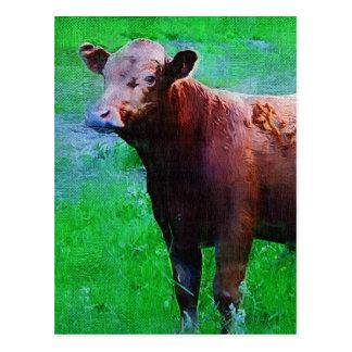 Gemalte Brown-Kuh Postkarte