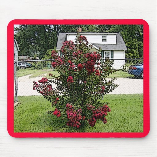 gemalte rote myrte bush mousepad zazzle. Black Bedroom Furniture Sets. Home Design Ideas