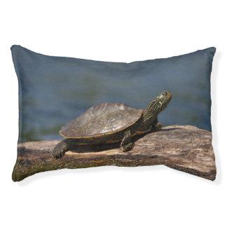 Gemalte Schildkröte auf einem Klotz Haustierbett