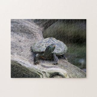 Gemalte Schildkröte auf einer Niederlassung Puzzle