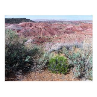 Gemalte Wüste Postkarte