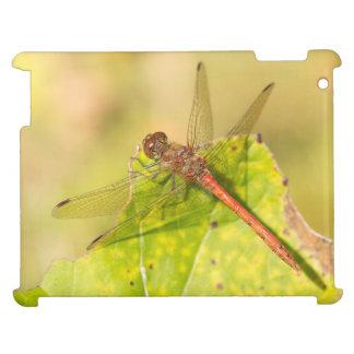 Gemeine Darter-Libelle iPad Hülle