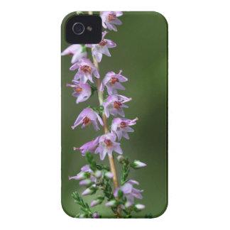 Gemeine Heide (Calluna gemein) iPhone 4 Hülle