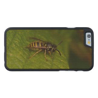 Gemeine Wespe Carved® iPhone 6 Hülle Ahorn