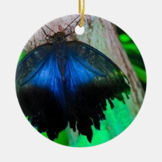 Gemeiner blauer Schmetterling Keramik Ornament