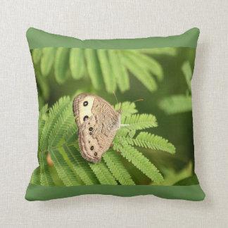 Gemeiner hölzerne Nymphen-Schmetterling auf Kissen
