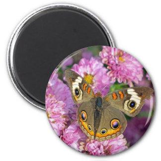 Gemeiner Rosskastanien-Schmetterling Runder Magnet 5,7 Cm