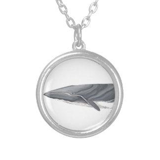 Gemeinsamer Rorcual - Absicht whale Halsband Versilberte Kette