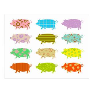 Gemusterte Schweine Postkarten
