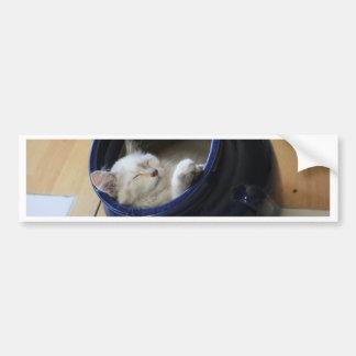 Gemütliche Katze Autoaufkleber