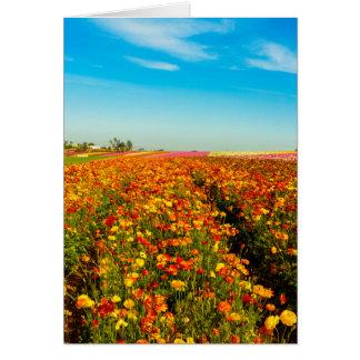 Generisches Greating Karten-Blumen-Feld Grußkarte